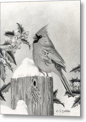 A Cardinal And Holly Metal Print by Sarah Batalka
