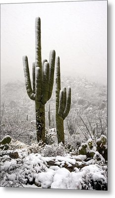 A Desert Southwest Snow Day  Metal Print by Saija  Lehtonen