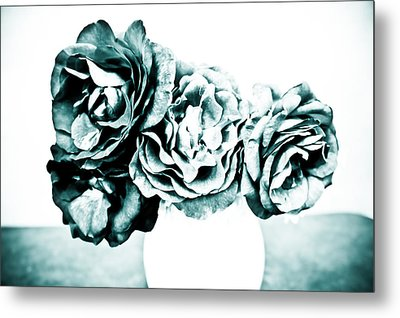 A Dream Of Roses Metal Print by Ronda Broatch