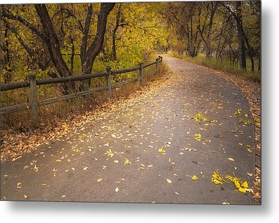 A Fall Walk Metal Print by Michael Van Beber