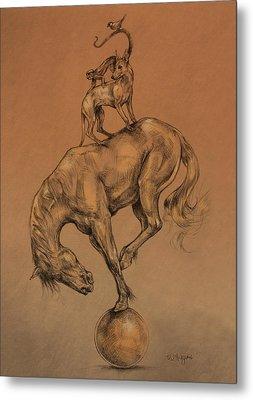 A Fine Balance Metal Print by Derrick Higgins