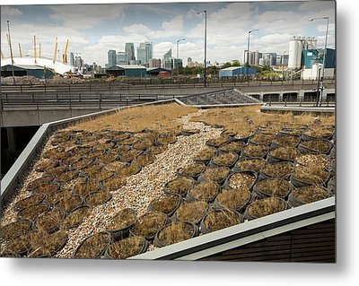 A Green Roof At The Crystal Building Metal Print by Ashley Cooper