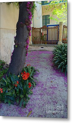 A Hint Of Spring Metal Print by Rene Triay Photography