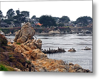 A Misty Day At Pacific Grove Metal Print by Susan Wiedmann