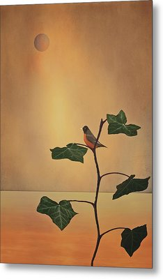 A Moment Of Zen Metal Print by Tom York Images