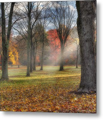 A November Morning Square Metal Print by Bill Wakeley