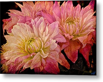 A Pastel Bouquet Metal Print by Chris Lord