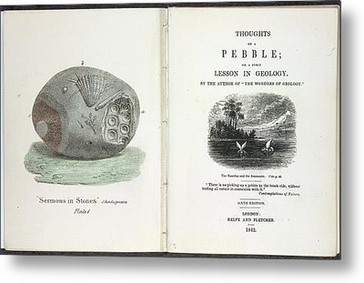 A Pebble Metal Print by British Library