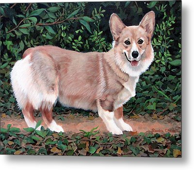 A Portrait Of Pickle Metal Print by Sandra Chase