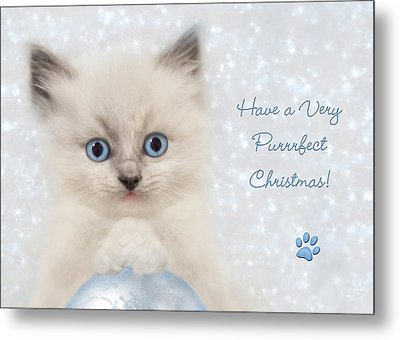 A Purrrfect Christmas Metal Print by Lori Deiter