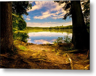 A Secret Place Metal Print by Bob Orsillo