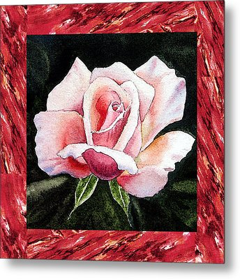A Single Rose Mellow Pink Metal Print by Irina Sztukowski