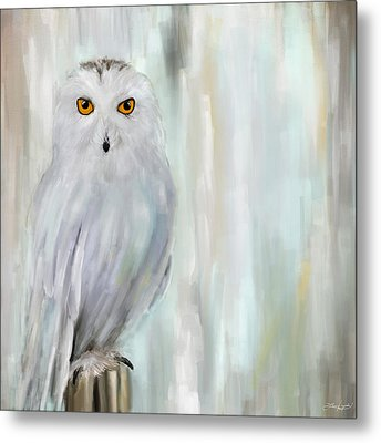 A Snowy Stare Metal Print by Lourry Legarde