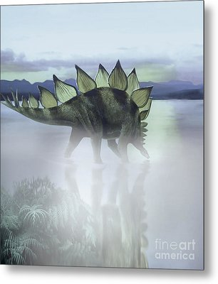 A Stegosaurus Dinosaur Grazing Metal Print by Jan Sovak