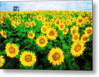 A Sunny Day With Vincent Metal Print by Sandy MacGowan