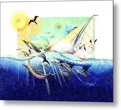 A Tern With The Dolphins Metal Print by David  Chapple
