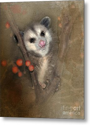A Thief In The Night Metal Print by Betty LaRue