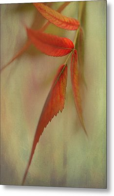 A Touch Of Autumn Metal Print by Annie Snel