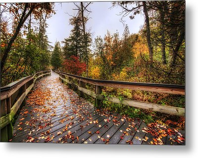 A Touch Of Autumn Metal Print by Everet Regal