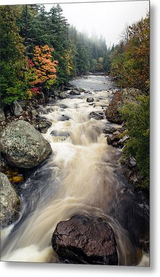 A Touch Of Fall Metal Print by Mark Papke