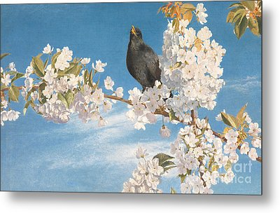 A Voice Of Joy And Gladness Metal Print by John Samuel Raven