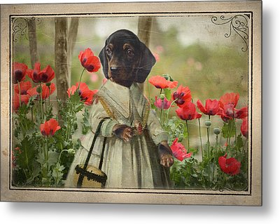 A Walk In The Garden Metal Print by Terry Fleckney