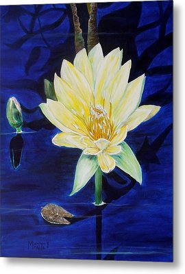 A Waterlily Metal Print by Marilyn  McNish
