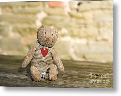 Abandoned Bear Metal Print by Anne Gilbert