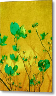 Abstract Dogwood Metal Print by Bonnie Bruno