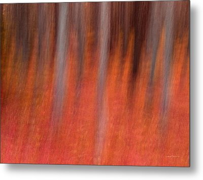 Abstract Forest 1 Metal Print by Leland D Howard