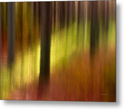 Abstract Forest 3 Metal Print by Leland D Howard
