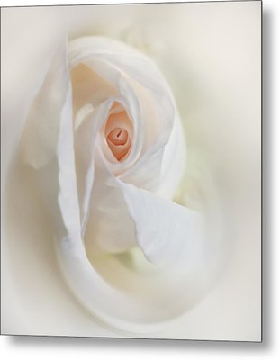 Abstract Pastel Rose Flower Metal Print by Jennie Marie Schell
