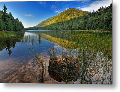 Acadia National Park-bubbles Pond Metal Print by Thomas Schoeller