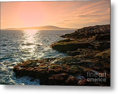 Acadia National Park Metal Print by Olivier Le Queinec