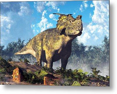 Achelousaurus Metal Print by Daniel Eskridge