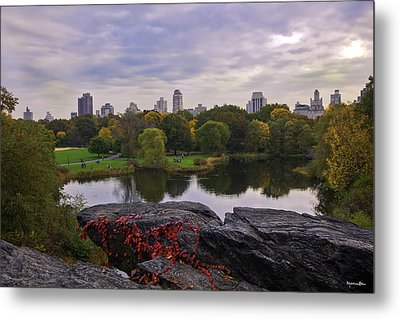 Across The Pond 2 - Central Park - Nyc Metal Print by Madeline Ellis