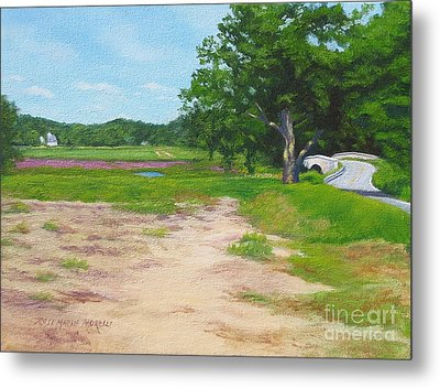 Across The Sudbury River Concord Massachusetts Metal Print by Rosemarie Morelli
