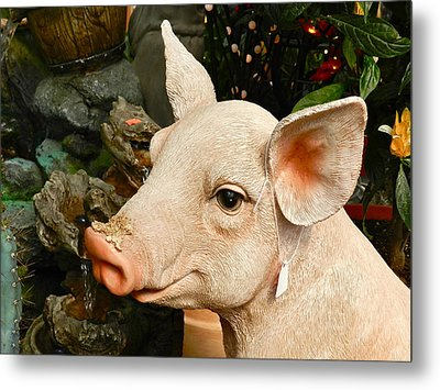 Acrylic Pig At Discount Metal Print by Ion vincent DAnu
