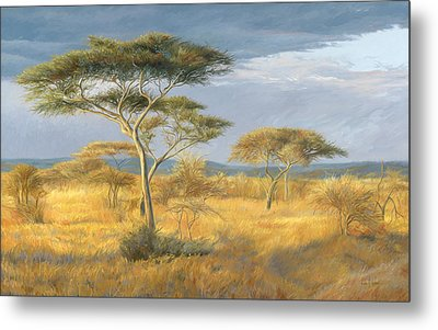 African Landscape Metal Print by Lucie Bilodeau