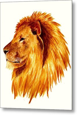 African Male Lion Metal Print by Michael Vigliotti