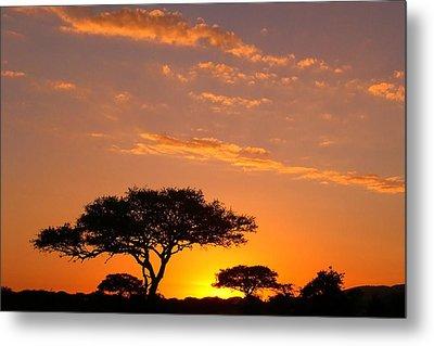 African Sunset Metal Print by Sebastian Musial