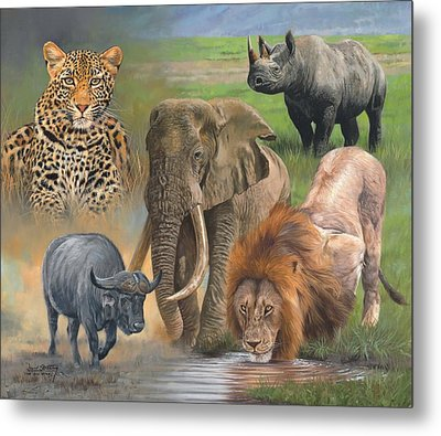 Africa's Big Five Metal Print by David Stribbling
