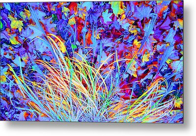 After The Fall Metal Print by Ann Johndro-Collins