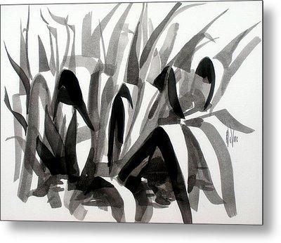 After The Iris Blooms Have Fallen Metal Print by Kip DeVore