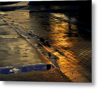 After The Rain Metal Print by Laura Fasulo
