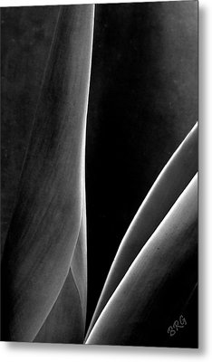 Agave Metal Print by Ben and Raisa Gertsberg