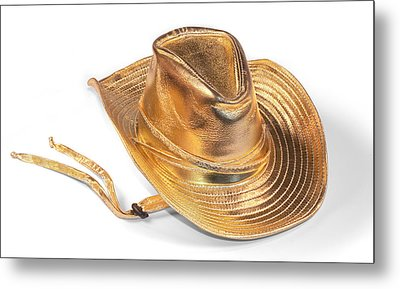 All Dressed Up Metal Print by Jo Ann Snover
