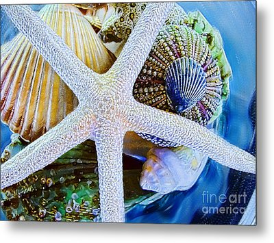 All The Colors Of The Sea Metal Print by Colleen Kammerer