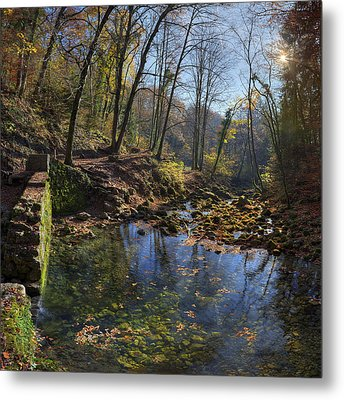 Allondon River Source Metal Print by Patrick Jacquet