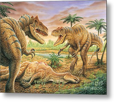 Allosaurus Face-off Metal Print by Phil Wilson